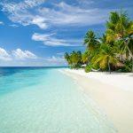 """SAFARI """"BEST OF MALDIVES"""" 26.11-05.12.2021 (Reis koos Aleksei Turovskiga)"""
