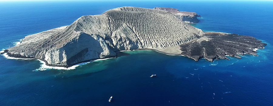 socorro-island-kodu